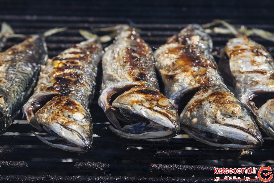 Fresh blue mackerel grilled