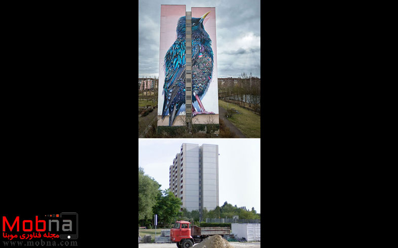 before-after-street-art-boring-wall-transformation-2-580df35