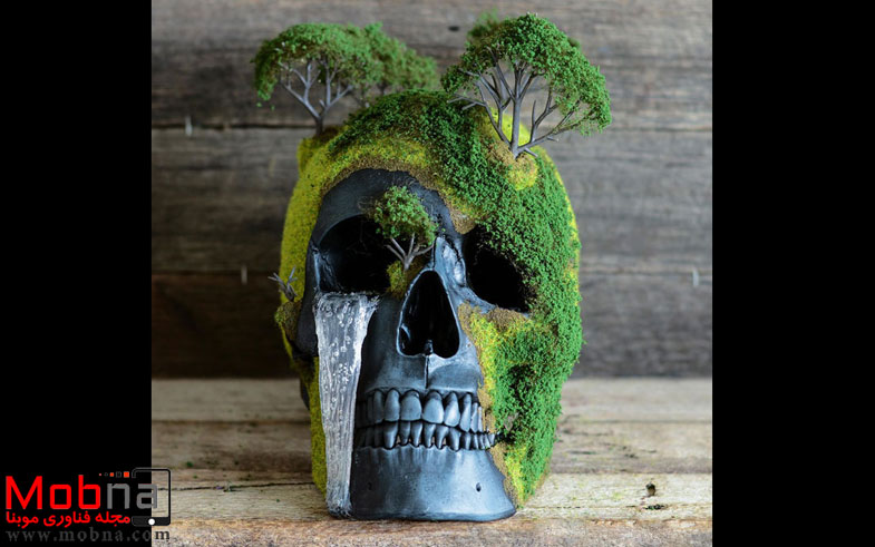 bonsai-skull-tree-jack-dust-26