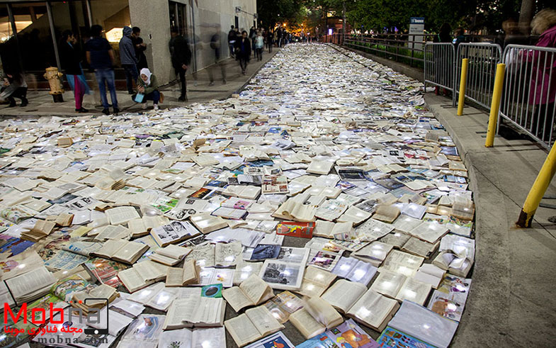 book-installation-literature-vs-traffic-luzinterruptus-t_003
