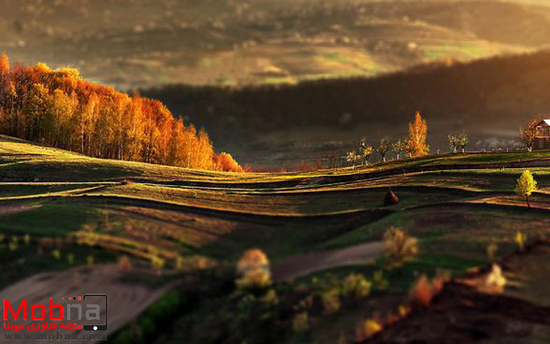capturing-the-fairytale-spirit-of-the-autumn-can-be-cheap-fb