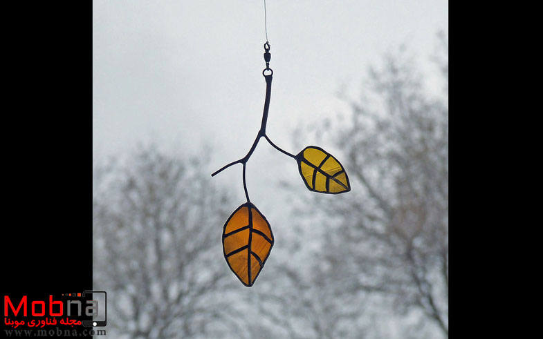 elm_leaves_small-58177562cf14a__880