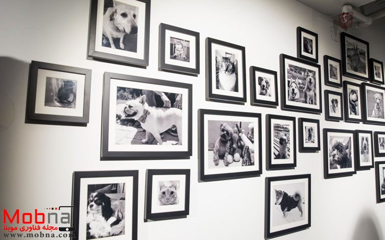 other-fun-art-we-spotted-the-wall-of-pets-employees-arent-pe