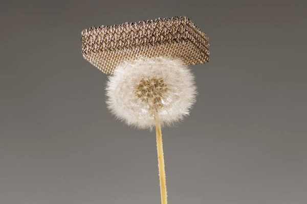 """A metal developed by a team of researchers from University of California at Irvine, HRL Laboratories and the California Institute of Technology is pictured resting on a dandelion fluff without damaging it in this undated publicity photo released to Reuters on November 17, 2011. The metal, which is about 100 times lighter than styrofoam, is the world's lightest material, according to a press release by the team. Their findings will be published in the November 18, 2011 issue of """"Science"""" journal. REUTERS/Dan Little/HRL Laboratories LLC/Handout (UNITED STATES - Tags: SCIENCE TECHNOLOGY) NO SALES. NO ARCHIVES. FOR EDITORIAL USE ONLY. NOT FOR SALE FOR MARKETING OR ADVERTISING CAMPAIGNS"""
